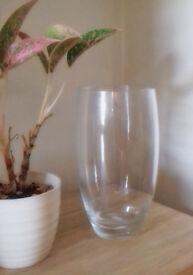 Tall and Elegant Handmade Glass Vase