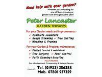 Gardener looking for work