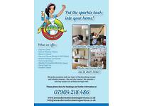 Professional cleaners at affordable prices ! Fully insured !