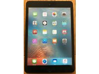 iPad mini 1 with Wifi Cellular and 64GB + case