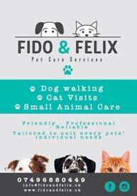 Dog walker, cat sitter and small animal care in and around Leeds. Friendly, professional, reliable!