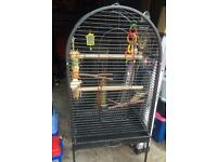 Top opening large bird cage