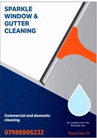 Sparkle window & gutter cleaning