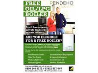 Free Oil/LPG Boiler