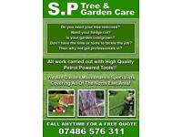 TREE SERVICE CALL TODAY FREE QUOTE