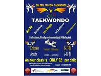 Taekwondo classes in Whitley Bay