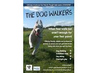 The Dog Walkers - Professional, Friendly & Reliable Walking Service in Swadlincote + Leicestershire
