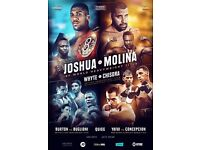 Anthony Joshua vs Eric Molina | Dillian Whyte vs Dereck Chisora £195 - Championship Boxing