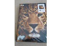 Leopard King Size Duvet Set, brand new