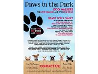 Paws in the Park Dog Walking