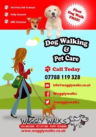 Waggly Walks. Dog Walking and Pet Service based in Southampton. Pet Sitting/Pet taxi/ Pet feeding