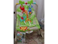 Fisherprice Infant-to-toddler Rocker