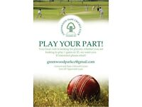 Your Local Cricket Club needs YOU!!