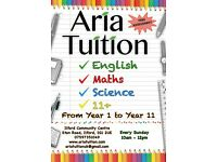 **Excellent Tutoring in Maths, English, Science & 11+ from Year 1-11**
