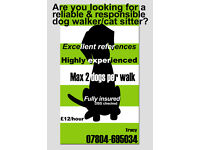 Reliable & Responsible Dog Walker/Cat Sitter (with day & overnight care).