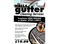 HALLS GUTTER CLEANING SERVICES