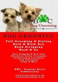 B&C Dog Grooming - Professional Dog Grooming Services