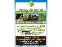 Original Tree Services - local, qualified, insured tree surgery services