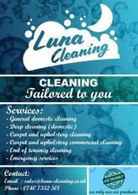 cleaning services tailored for everyone
