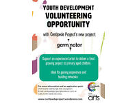 Youth Development Volunteer