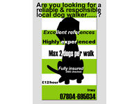 Looking for a reliable & responsible dog walker?