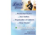 Domestic Cleaner, Iron Clothes, Organization of Cabinets, Deep Cleaner