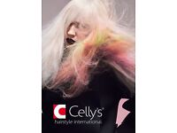 Celly's is looking for hair stylist / hairdresser (NVQ 2 and 3 accepted) in Waterlooville!