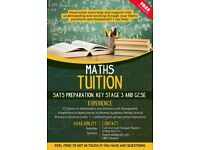 Experienced Maths Tuition Years 5-12 Key Stage 2 SATs preparation, Key Stage 3, GCSE, AS modules
