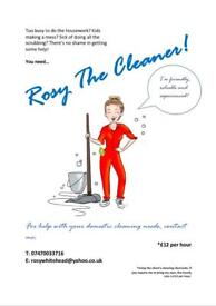 Rosy the Cleaner