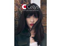 Manager needed for Celly's Bognor Regis shop