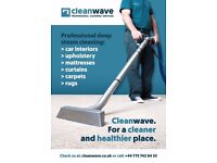 CleanWave- professional cleaning service