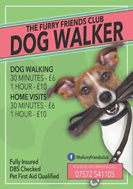 Dog Walking Service - The Furry Friends Club