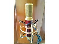 Blue Woodpecker Ribbon Microphone - Similar to Condenser Mic