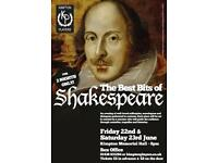 The Best Bits of Shakespeare