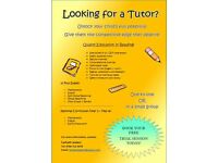 11 Plus Tutor ( Math/ English/ Non- Verbal Reasoning/ Verbal reasoning