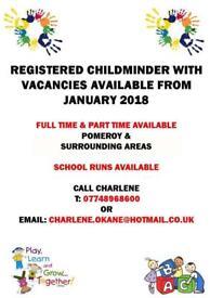 Registered childminder
