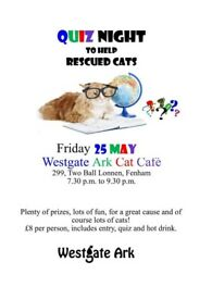Quiz night to raise funds for the veterinary treatment of stray cats rescued by Westgate Ark.
