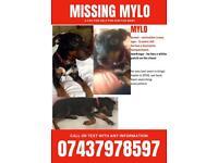 Find mylo