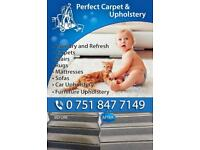 Cleaning carpet and upholstery