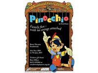 Pinocchio The Panto