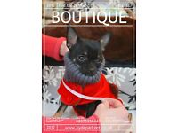 Pet Boutique Manager wanted in Central London!