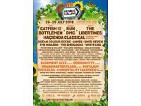 Kendal calling tickets 2018 x2