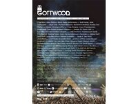 Gottwood Festival Wales - 1 x Full Weekend Ticket, 8-12 June 2017