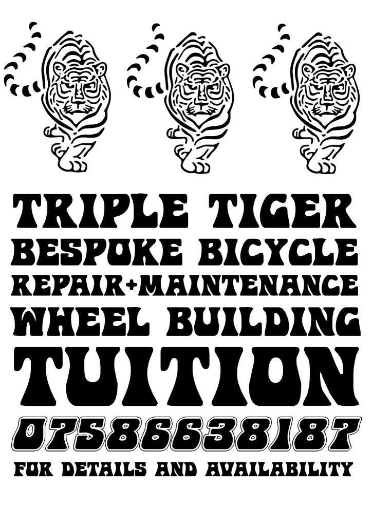 Triple Tiger Cycles Tuition