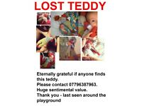 LOST TEDDY on Hampstead Heath - Parliament Hill playground