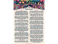 2x Boomtown Standard tickets inc Weds Entry