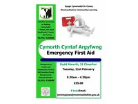 Emergency First Aid Course in Abergavenny