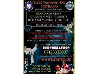 Elite Taekwon Do Classes for Children in Morningside