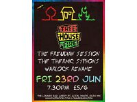 Tree House Fire (reggae/rock) gig at The Lounge Bar, Alton