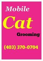 $50. ** MOBILE CAT GROOMING ** $50